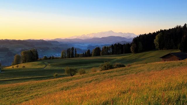 Morgendlicher Blick von Kirchberg Richtung Alpstein.