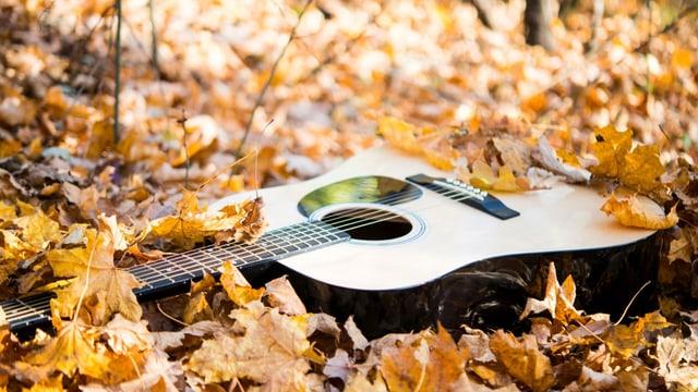 Eine Gitarre. Im Herbstlaub. Wenn das nicht mal November ist.