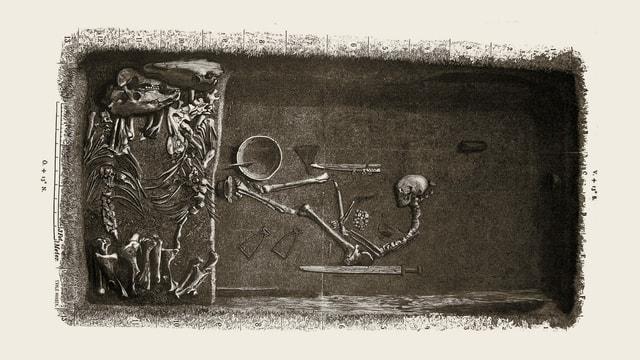 ein schwarz-weiss Foto eines Grabes mit einem Skelett von einem Menschen und zwei Pferden