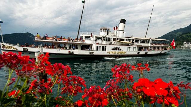 Das Dampfschiff «Stadt Luzern» fährt auf dem Vierwaldstättersee.