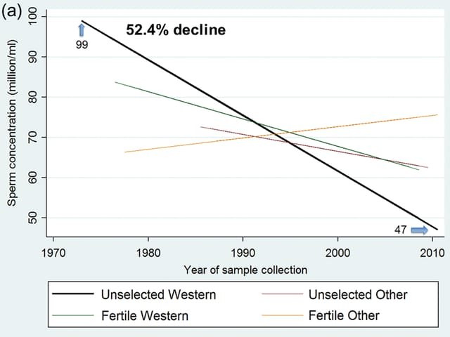 Grafik, die den Rückgang der Spermienzahlen zeigt