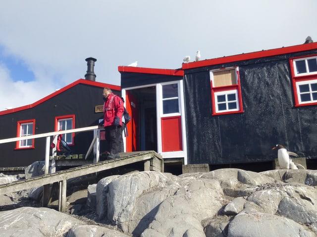 Ein dunkelblaues Haus mit roten Fensterrahmen steht auf einem Felsen. Ein Mann steht vor der Tür, ein Pinguin ist auch zu sehen.