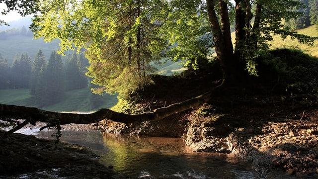 Naturpark Neckertal