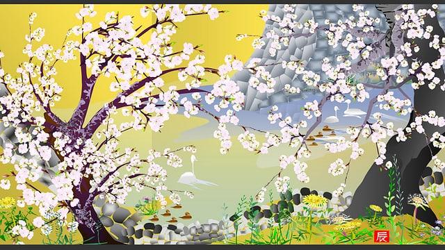 Zeichnung einer Landschaft mit Kirschblüten; der Stil erinnert an japanische Holzschnitte.