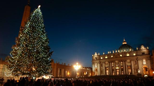 Christbaum auf dem Petersplatz.