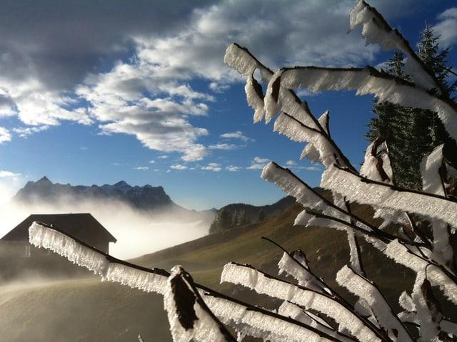 Sonniger Wintertag in verschneiter Berglandschaft. Im Vordergrund Ast mit viel Eis daran.
