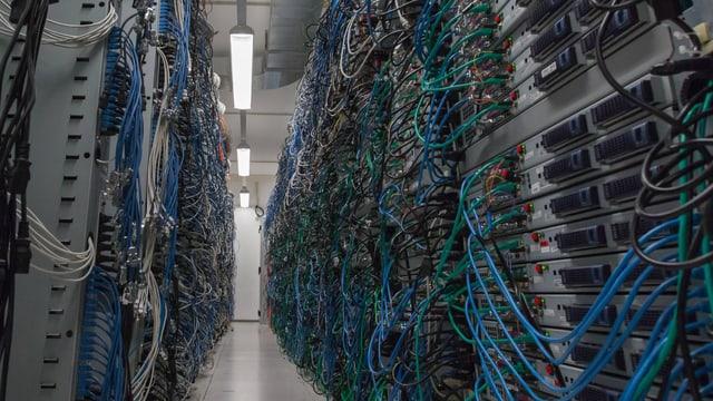 Blick in ein Rechenzentrum mit verdrahteten Webservern in Gestellen.