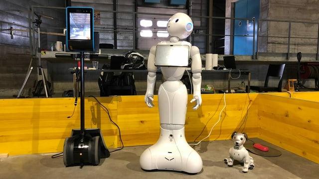 Weitere getestete Robotermodelle