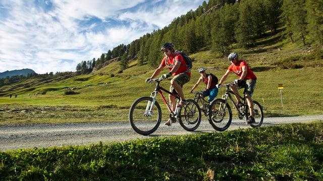 """3 bikers sin la """"Bike Tour dal Parc Naziunal"""""""