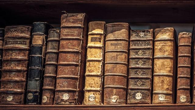 Alte Bücher stehen auf einem Wandbord