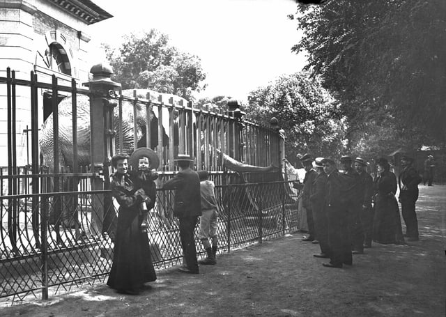 Eine Schwarz-Weiss-Fotografie von Menschen, die vor einem Elefanten-Gehege stehen.