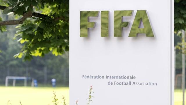 Der Weltfussball-Verband Fifa.