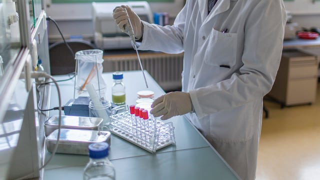 Ein Labormitarbeiter untersucht eine Probe.