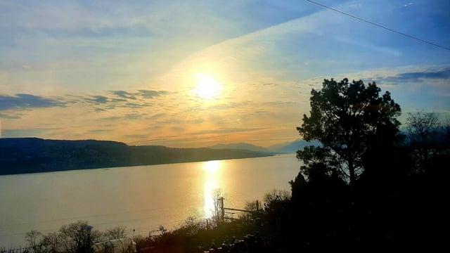 Die Sonne geht über dem Zürichsee auf.