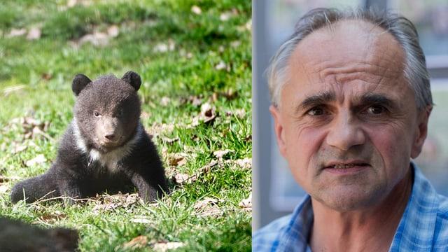 Der vom Bärenvater getötete Jungbär Nr. 3 und der Berner Tierparkdirektor Bernd Schildger.