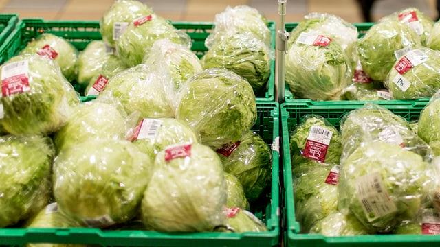 Salatköpfe liegen in einem Supermarkt in grünen Plastikkisten in der Auslage