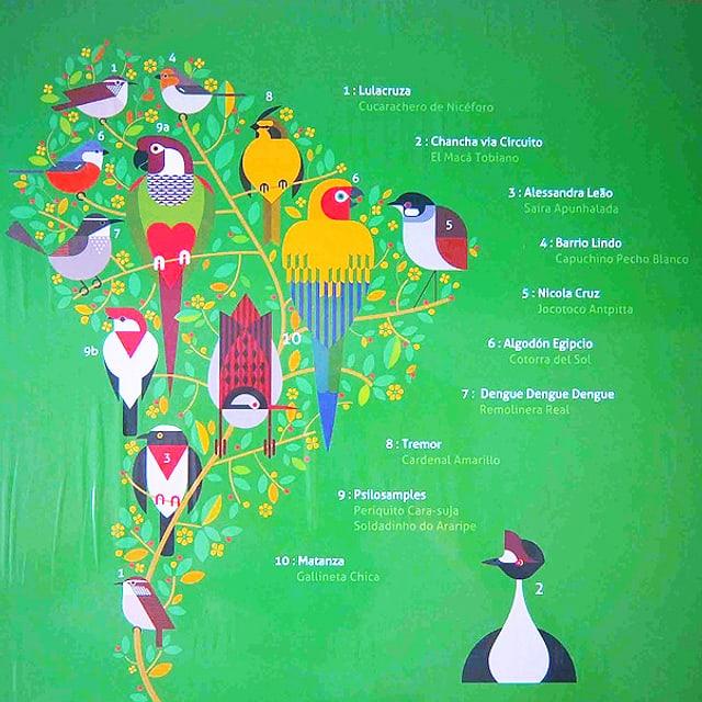 Grüne quadratische Platte mit südamerikanischen bunt gefiederten Singvögeln.