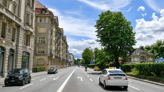 mehrspurige Strasse mit alten Stadthäusern zund Bäumen