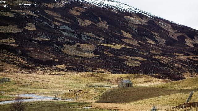 Ein Hügel mit Flecken abgebrannten Landes.