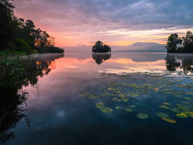 Das Morgenrot spiegelt sich im Wasser.