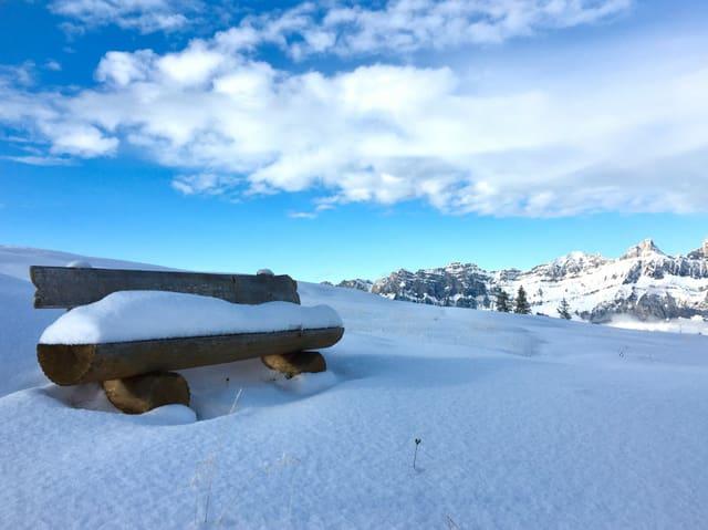 Verschneite Winterlandschaft und blauer Himmel.