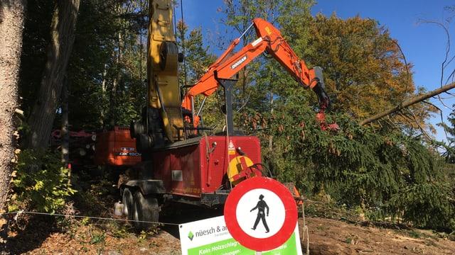 Eine Maschine holt hält einen gefällten Baum, im Vordergrund eine Verbotstafel