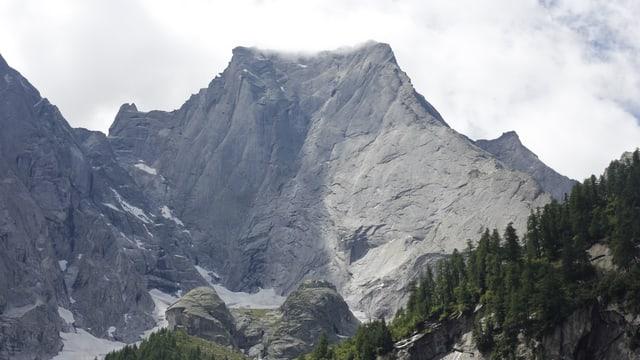 Il Piz Badile cun la paraid vers nordvest - dretg l'enconuschent spitg dal nord.