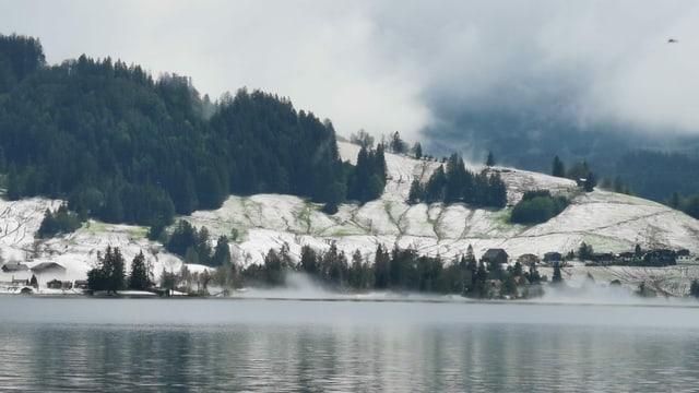 Winter im Juli am Sihlsee bei Einsiedeln. Die Hänge sind weiss wie im Winter, aber von Hagelkörnern bedeckt.