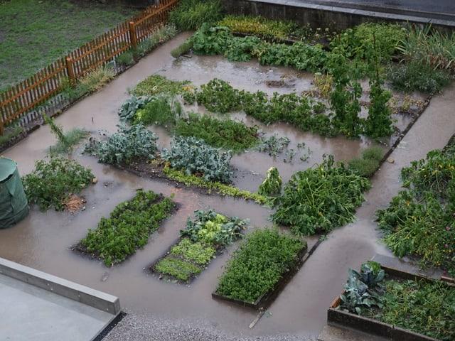 Ein überschwemmter Garten.