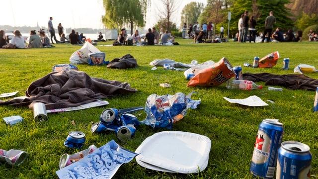 Mit Littering-Abfall übersäte Wiese in Zürich.