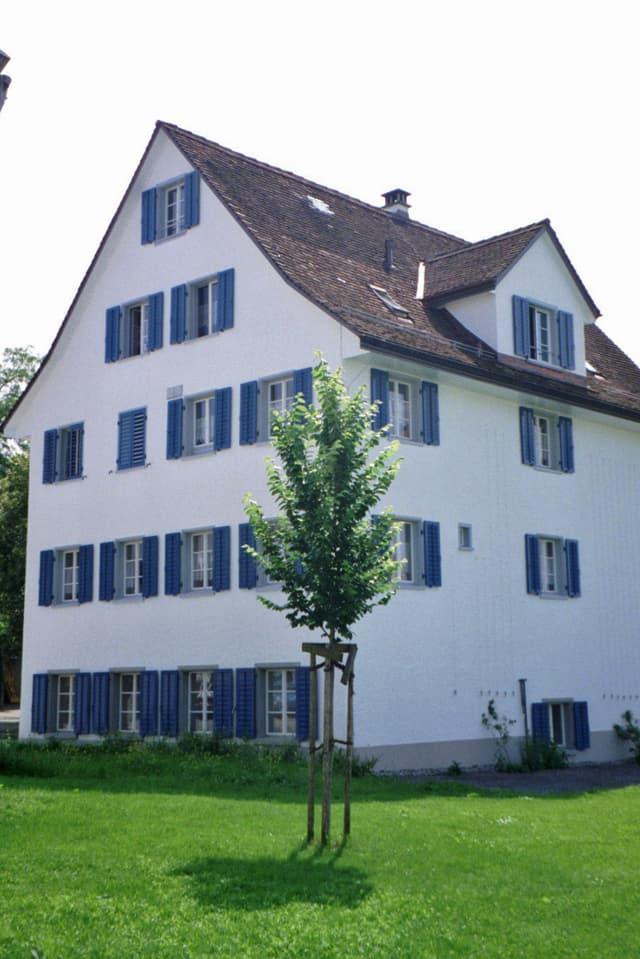 Ein vierstöckiges weisses Haus mit blauen Fensterläden umgeben von einer grossen Wiese: die Therapiestation Ulmenhof.