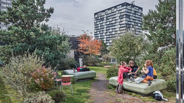 Dachgarten auf dem Toni-Areal in Zürich.