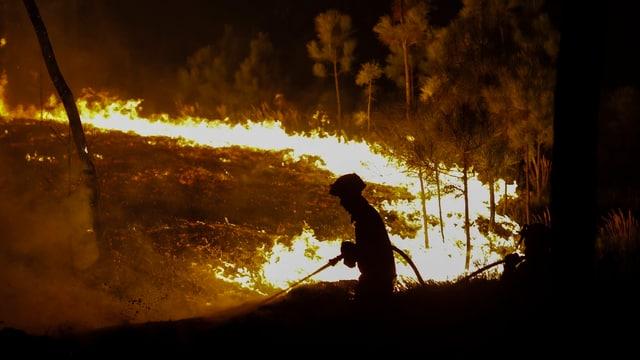 Ein Feuerwehrmann in Portugal versucht das Feuer einzudämmen.