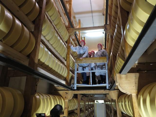 Ein rollendes Podest im Käsekeller voller Käselaiber - darauf stehen 4 Leute.