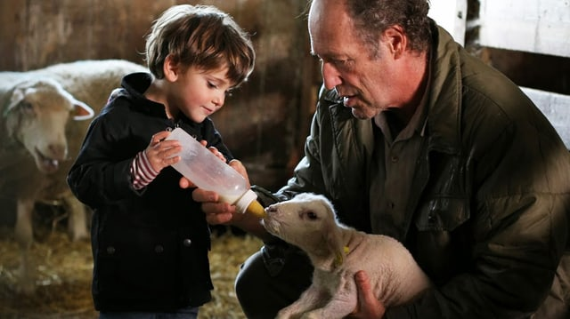 Ein Bub gibt einem Lamm, das von einem älteren Herrn gehalten wird, den Schoppen.