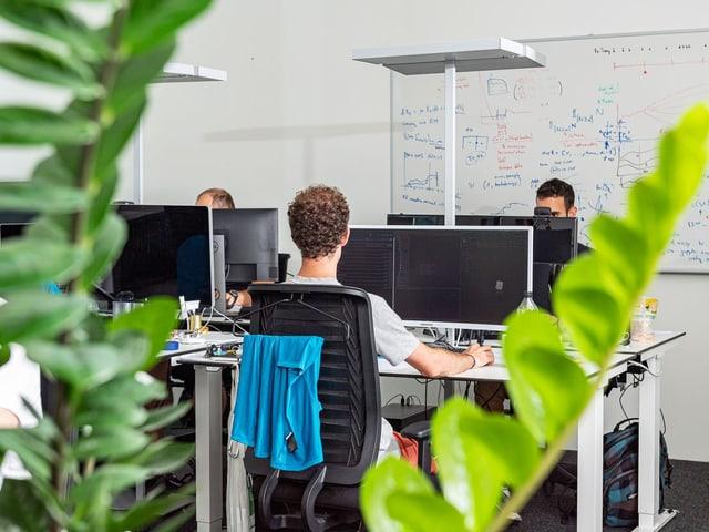 Drei Mitarbeiter von Zenai an ihren Arbeitsplätzen
