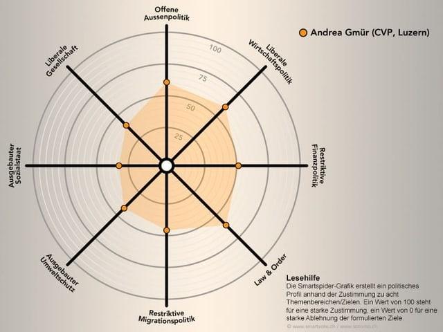 Das politische Profil von Andrea Gmür schematisch dargestellt.