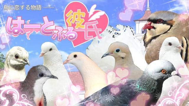 Vögel stehen vor einem romantischen Hintergrund