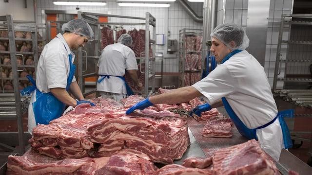 Arbeiter von Bell am Werk an grossem Stück Fleisch