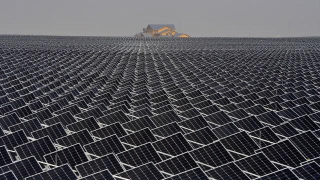 Solarpanels, so weit der Blick reicht.
