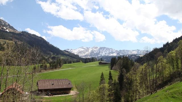 Blick ins Tal auf grüne Wiese und Bergkette.