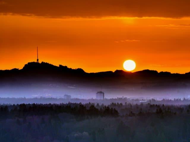 Morgendunst über Feld, Sonne geht an orange-gelbem Himmel auf.