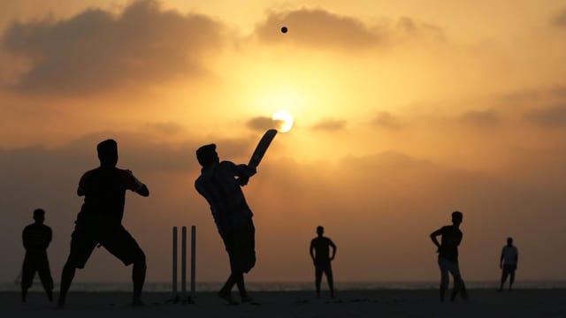 Silhouetten von Cricket-Spielern in der Abendsonne.