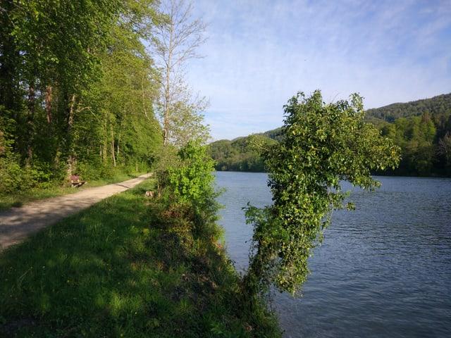 Ein Wanderweg und eine Bank an einem Fluss.