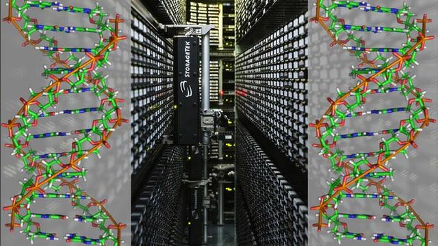 Collage: Blick in ein Datencenter, links und rechts Diagramm einer DNS Doppel-Helix.