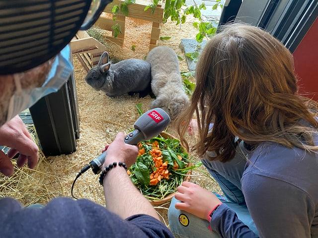 Die Hasen werden von den Tierpfleger:innen gefüttert.