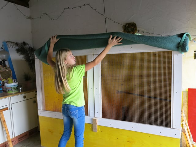 Elena klappt beim Hühnerkäfig die grüne Decke hoch.