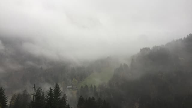 Nebelverhangene Gegend um Grafenort.