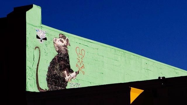 Schwarze Ratte mit Hut auf eine grüne Wand gesprayt.
