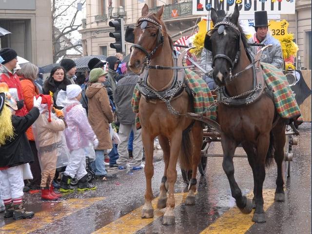 Zwei Pferde an der Fasnacht vor einer Chaise